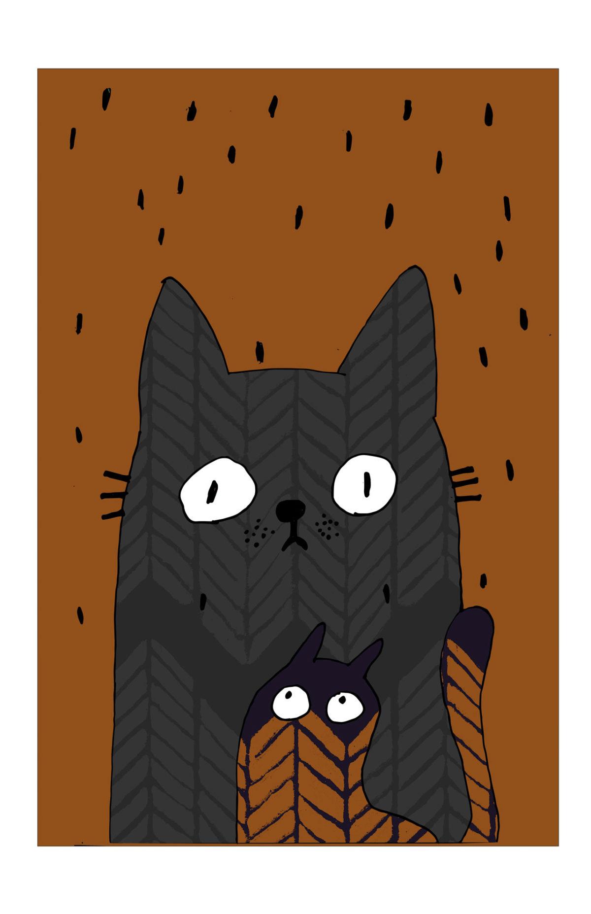 Los gatos de Montt